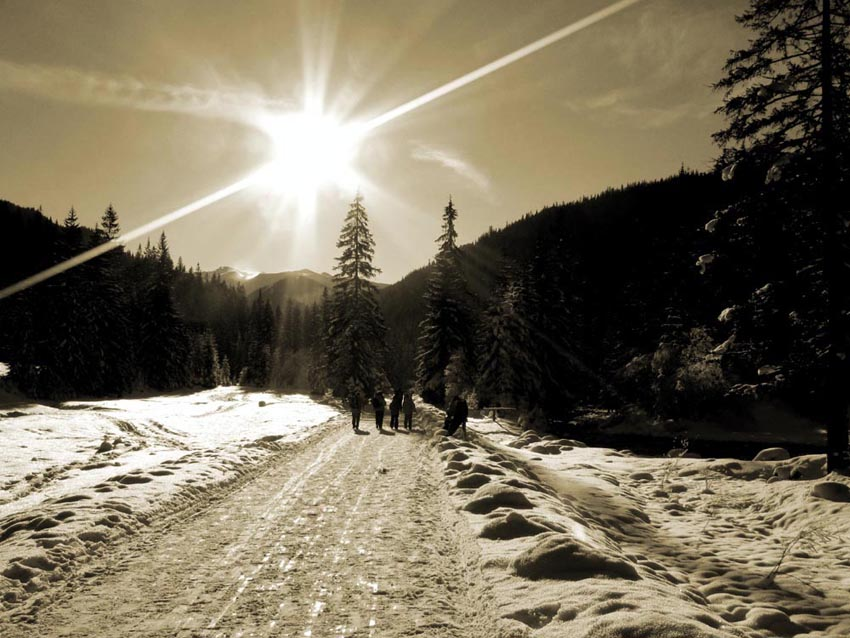 landscape photography, landscapes, winter landscape