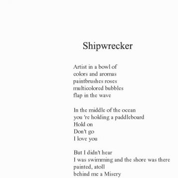 in the insertion of a parenthesis, poems collection