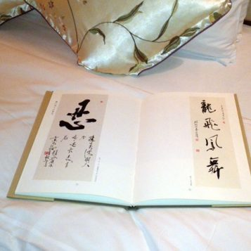 There were a couple of books, inside the room, with traditional Chinese characters. Poetry or something?